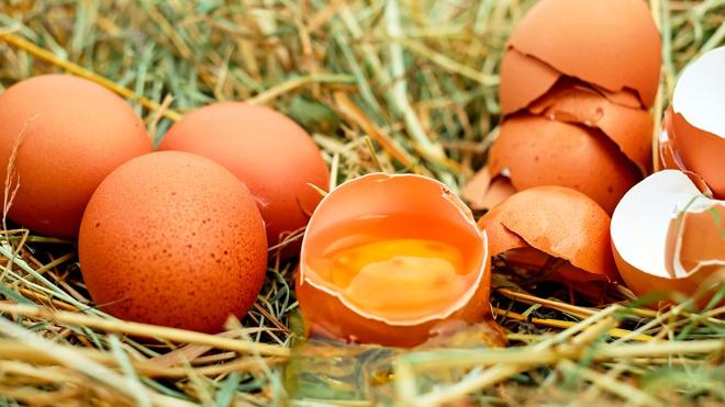 Эксперты предупредили о последствиях полного отказа от яиц