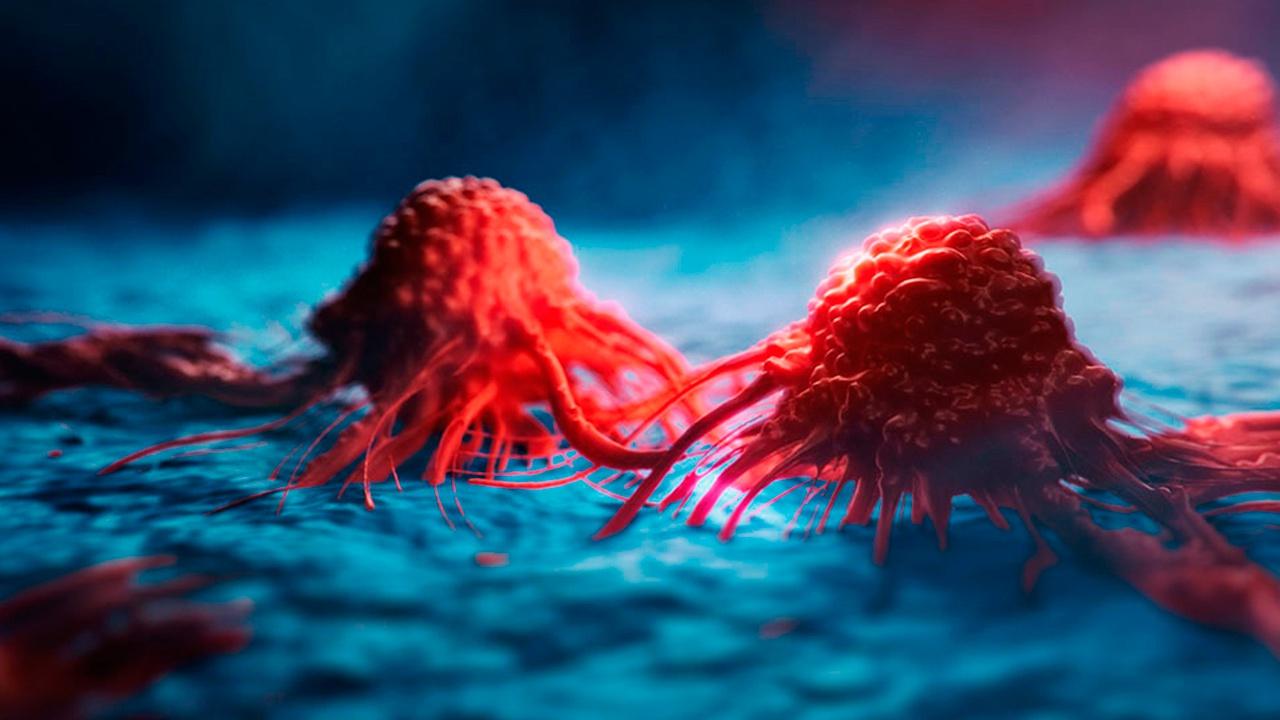 Ученые рассказали о новом способе борьбы с неизлечимым раком