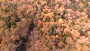 Опубликовано видео с места обнаружения обломков пропавшего Ан-26