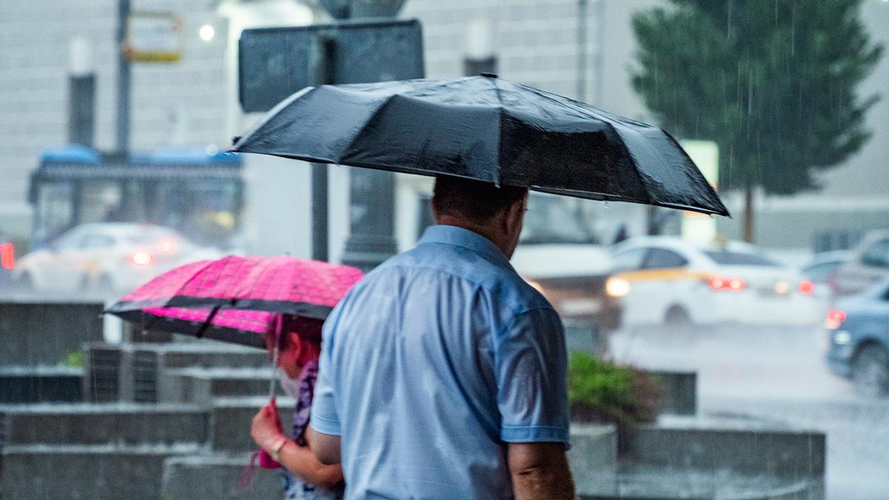 Синоптик предупредил москвичей о дождливой погоде
