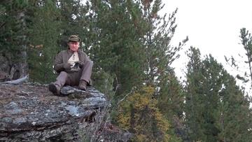 Путину показали медвежью берлогу в сибирской тайге