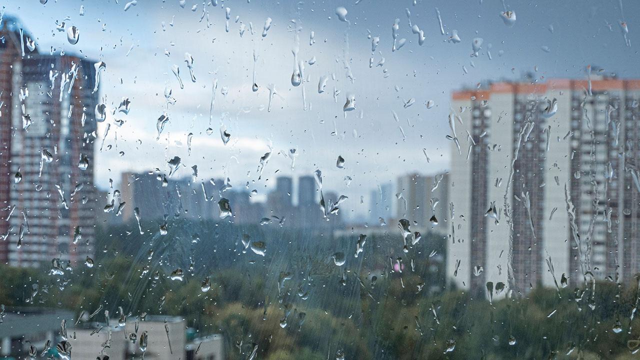 Метеорологи рассказали о погоде в России в ближайшее время