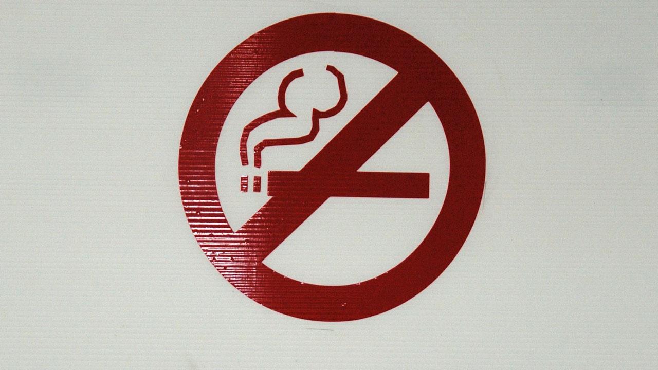 Голикова поручила проработать меры по профилактике курения в школах