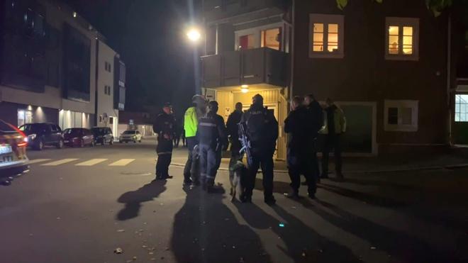 СМИ: число жертв норвежского стрелка из лука выросло до пяти