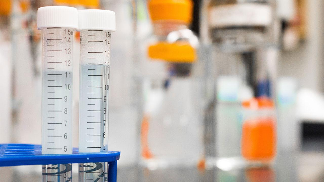 Российские химики синтезировали вещество для утилизации органических отходов