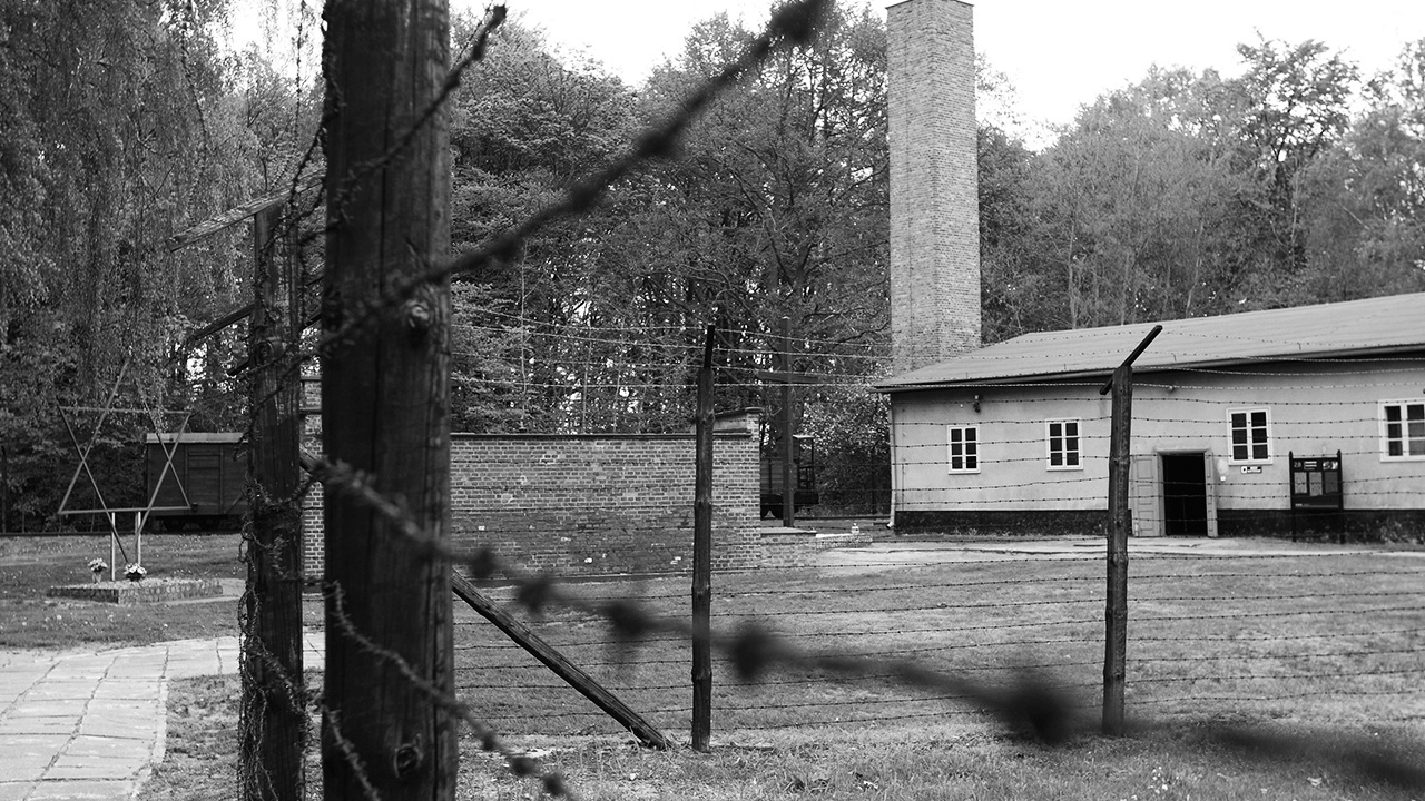 Стенографистка на фабрике смерти: за что судят 96-летнюю жительницу Германии