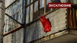 Бывшая соседка поделилась подробностями жизни семьи убитой в Вологде школьницы