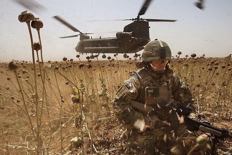 Наибольший объём производства наркотиков наблюдается в областях, где сосредоточены американские и британские военные базы.